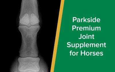 Parkside Premium Joint Supplement for Horses