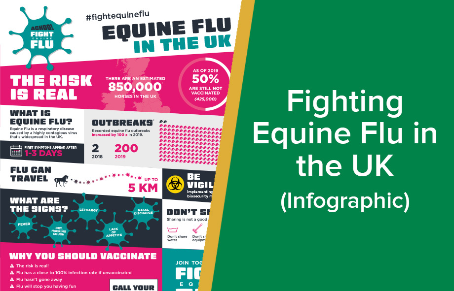 Fighting Equine Flu in the UK (Infographic)