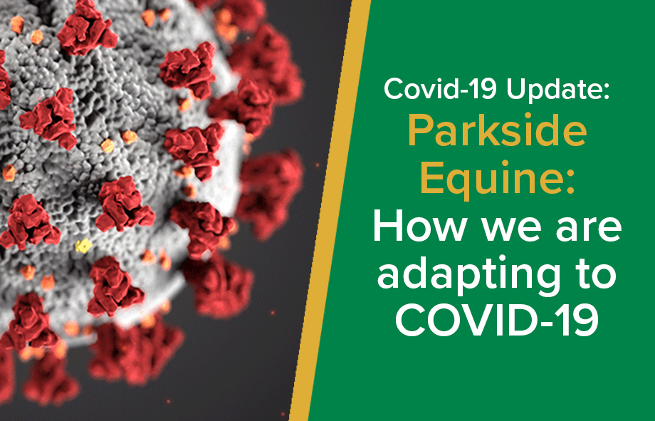 Parkside Equine: How we are adapting to COVID-19