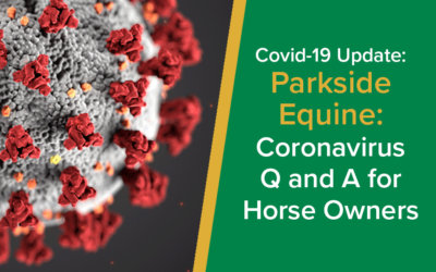Coronavirus Q and A for horse owners | Parkside Vets Equine