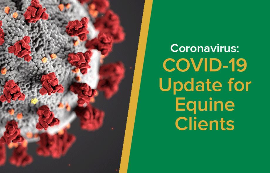 Coronavirus: COVID-19 Update for Equine Clients