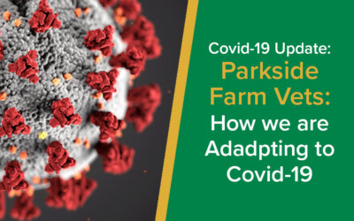 Parkside Vets Farm: How we are adapting to COVID-19