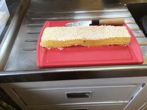 parkside-vets-bee-blog-june-comb