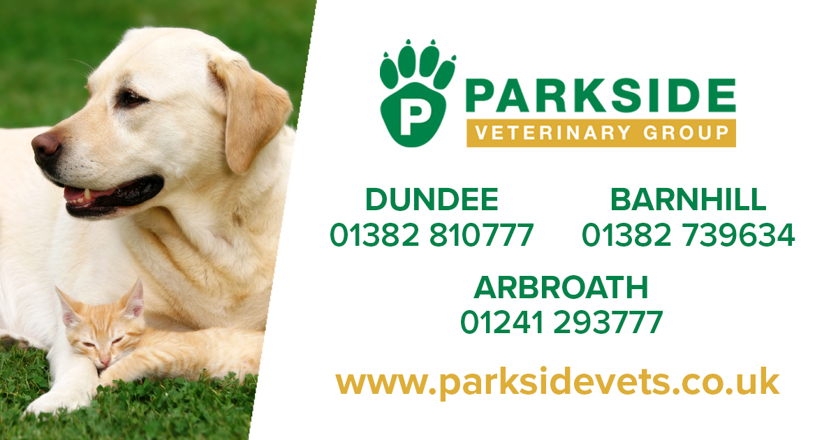 Parkside Vets News and Blog   Really Useful information for