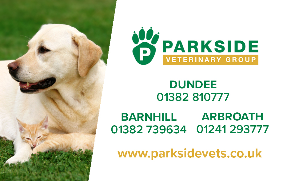 Parkside Vets News and Blog | Really Useful information for